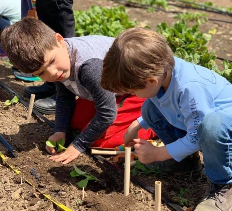 Unity Charter School Continues to Sow a Passion for the Environment
